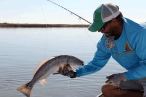 redfish, fly fishing, port aransas, corpus christi, texas, coast, saltwater, guide