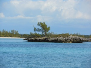 The secret bonefish flats of the Abacos