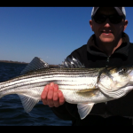 Jamaica Bay Striper