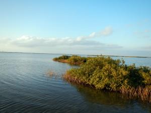 mangrove cays