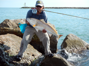bull, redfish, fly fishing, on the fly
