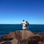 fly fishing, texas, port aransas, jetty, jack, crevale, king, spanish, mackerel,