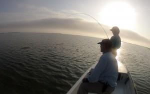redfish, sunrise, fly fishing, texas, coastal bend, port aransas