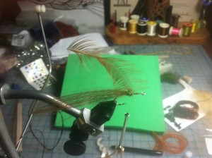 Fly Tying Step 5 - add hackle tie in at tip