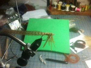 Fly Tying Step 8 - palmer hackle forward, behind, between and in front of legs