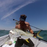 jacks, fly rod, saltwater, gamefish, port aransas, texas, fly fishing