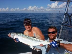 kingfish, mackerel, gulf of mexico, live bait