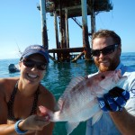 red snapper, rigs, gulf of mexico, fishing