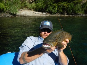 large brown trout streamer flyfishing argentina patagonia river guides prg