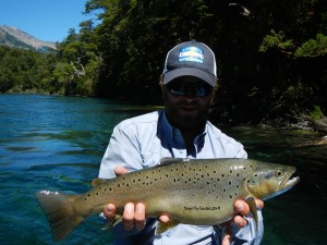 huge brown trout stream flyfishing argentina patagonia river guides prg