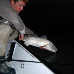 catch & release, redfish, fishing, port aransas, Texas, Coast, Gulf of Mexico