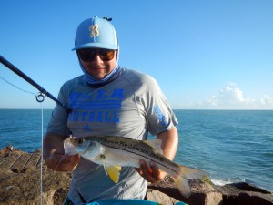 snook, texas, fly, fishing, gulf, mexico,
