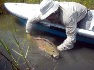 Bull, redfish, fly fishing, texas, gulf, coast