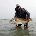 black drum, texas, coast, fly fishing, guide