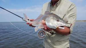 fly fishing, texas, coast, guide