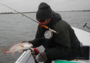 redfish, on the fly, fishing, port aransas, texas, coast